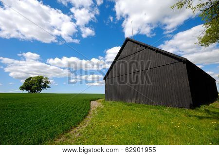 Barn and landscape with a tree on a hill. The sky is blue with white clouds.