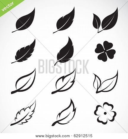 Vector Leaves Icon Set
