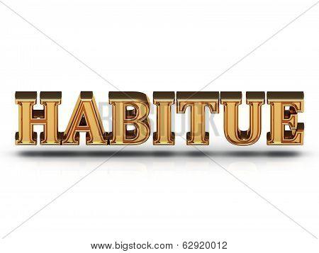 Habitue - 3D Inscription Large Golden Letter
