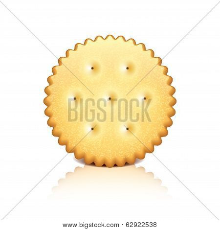 Cracker Cookie Vector Illustration