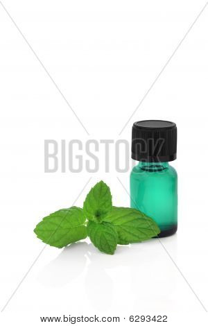 Peppermint Herb Essence
