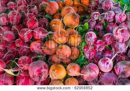 Colorful Beets At The Hollywood Farmer's Market