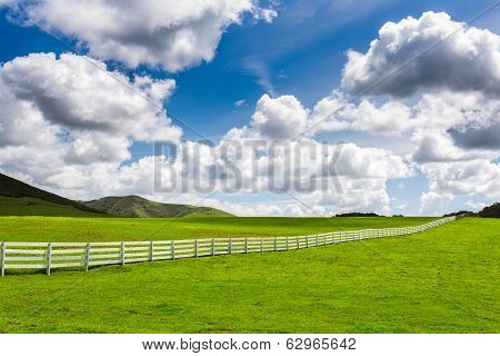 Green Pasture With White Fence