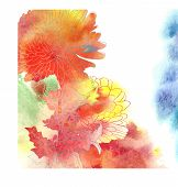 Watercolor Background With Chrysanthemum.