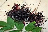 picture of elderberry  - Elderberry black fruit on the table natural - JPG