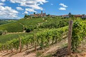 Green vineyards and small town on hill in Piedmont, Northern Italy.