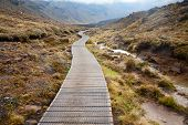 foto of tramp  - Public tramping track at Tongariro National Park in New Zealand - JPG