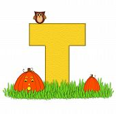 Alphabet Pumpkin Patch T