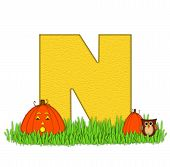 image of letter n  - The letter N in the alphabet set  - JPG