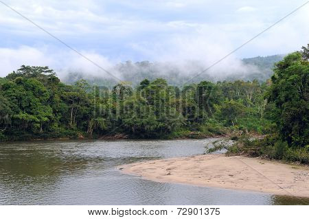 Amazon, View Of The Tropical Rainforest, Ecuador