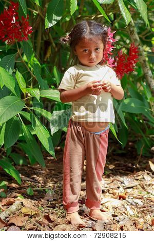 Yasuni, National Park, Ecuador, November 2012, Young huaorani girl explaining about insects life