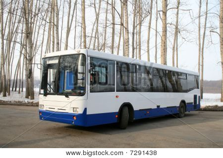 New bus