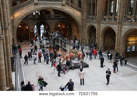 Museum Visitors In London