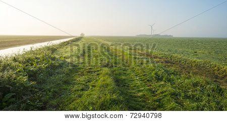 Mowed field along a dike in a hazy landscape
