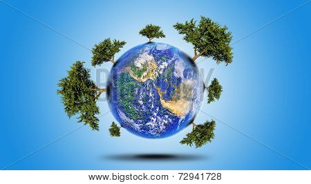 Planet With Tree