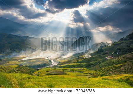 Terrace rice field and mountain view