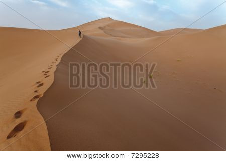 Man Up On The Dunes In Sahara.