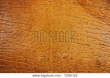 Texture Of Old Beige Leather