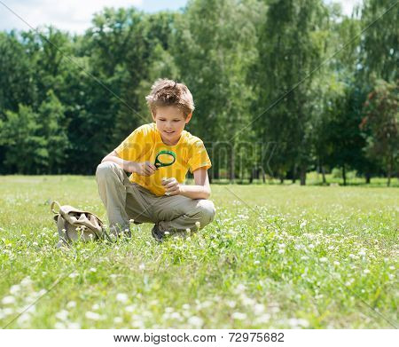 Curious kid on the meadow looking the grass with a magnifying glass. Cute boy doing experiments outd