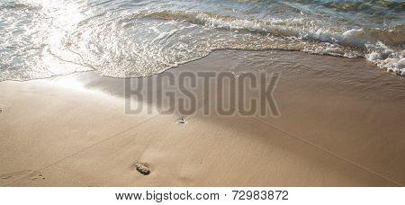 A wave caressing a sandy beach