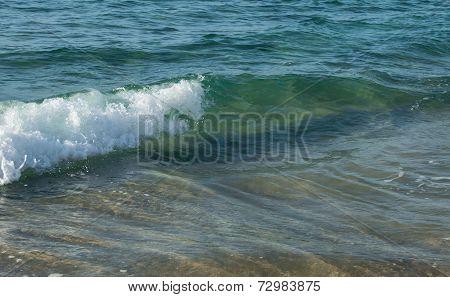 Foamy wave rushing foreward