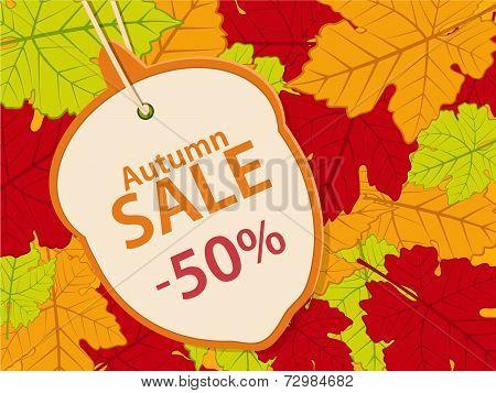 Autumn Sale Background14