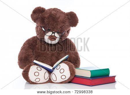 Teddy bear with glasses reading stories for christmas - isolated on white background