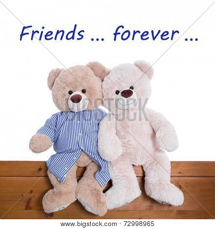 Best friends forever - teddy bears sitting together isolated on white background
