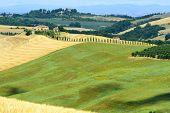 picture of senesi  - Crete senesi characteristic landscape in Val d - JPG