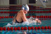 stock photo of breast-stroke  - a woman is swimming using breast stroke - JPG