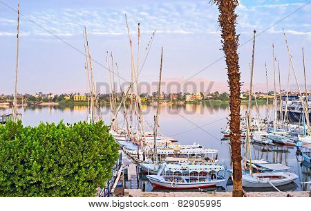 The Nile In The Morning