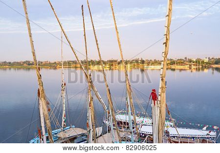 The Egyptian Yachts