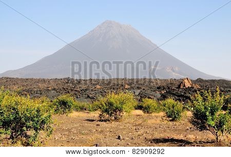 Crop Field By The Volcano