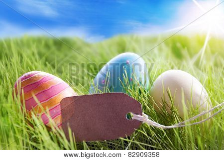 Three Colorful Easter Eggs On Sunny Green Grass With Label With Copy Space