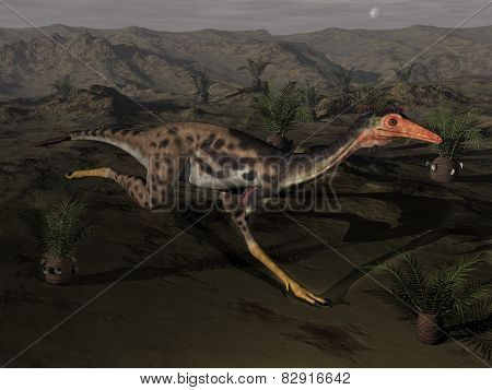 Mononykus dinosaur by night - 3D render