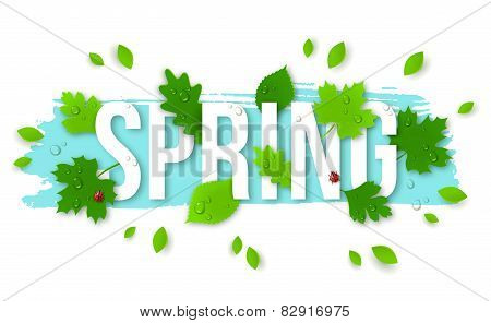 Beautiful Spring Background with Leaves, Lady Bugs and Drops.