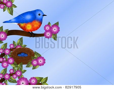 Bluebird and Nest Background