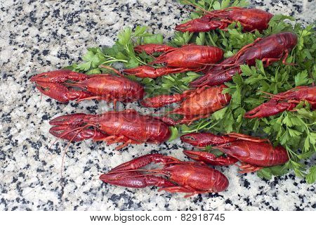 Red River Crayfish On Green Parsley Top View