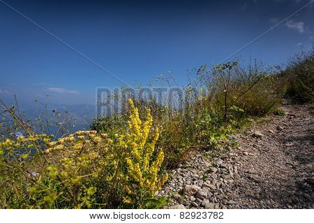 Gravel Path On High Mountain At Sunny Day