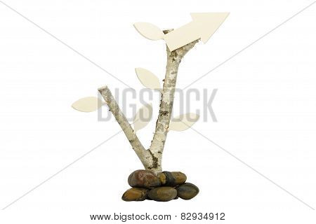 Birch with wooden arrow