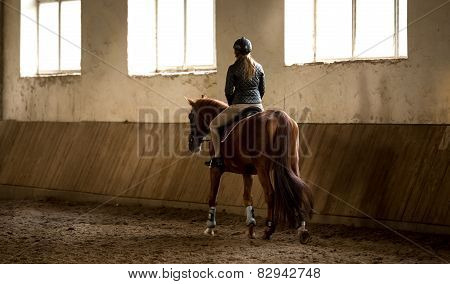 Woman Doing Horseback Riding In Manege