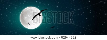 Night Sky with Moon and Bird Silhouette. Vector EPS 10.
