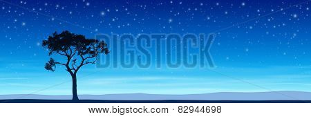 Lone Tree in Silhouette with Night Sky and Stars - Vector EPS 10