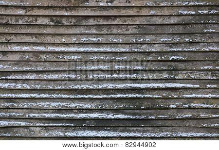 Winter Lath Texture