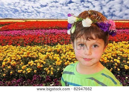Field of multi-colored decorative buttercups
