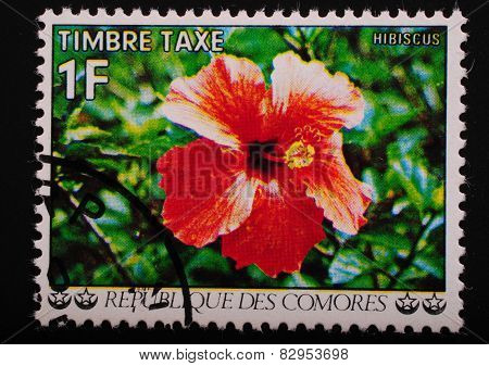 Comoros-circa 1977: Postage Stamp Printed In The Comoros Shows An Image Of An Exotic Flower Hibiscus