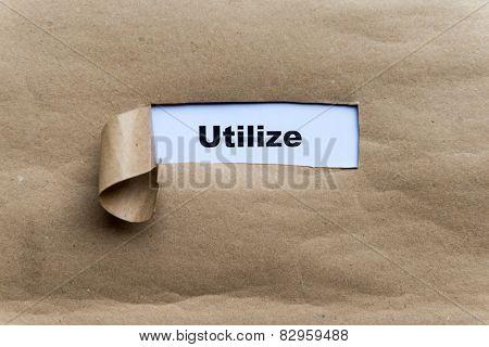 Utilize