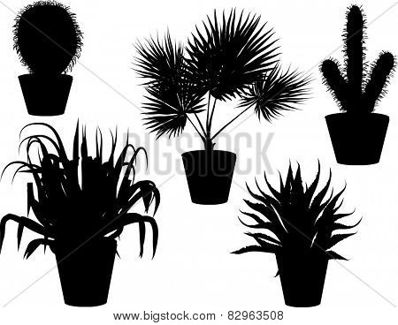 illustration with set of plants in pots silhouettes isolated on white background