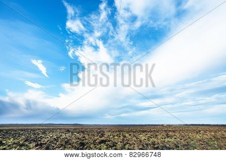 Blue Sky Over Cultivated Fileld In Spring