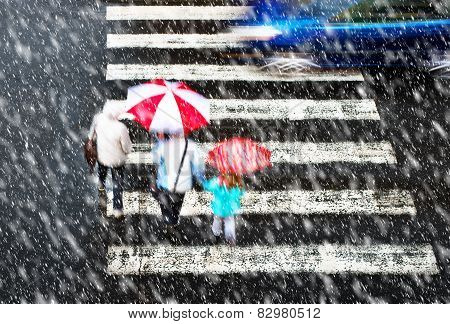 Pedestrian Crossing In Tzhe Snowstorm